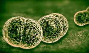 Μηνιγγίτιδα: Πέντε συμπτώματα που όλοι πρέπει να γνωρίζουμε