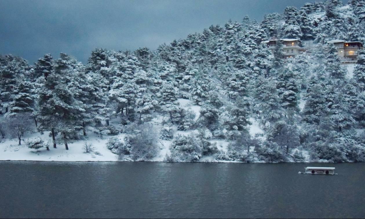 Καιρός ΤΩΡΑ: Στο «μάτι» του χιονιά η Εύβοια - Ηλιος με δόντια στη Φθιώτιδα