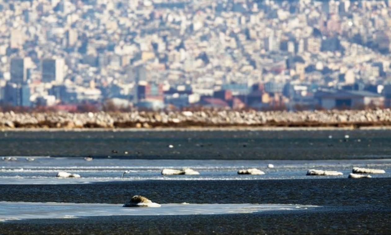 Κακοκαιρία: Μοναδικές εικόνες από την παγωμένη λίμνοθάλασσα του Καλοχωρίου Θεσσαλονίκης