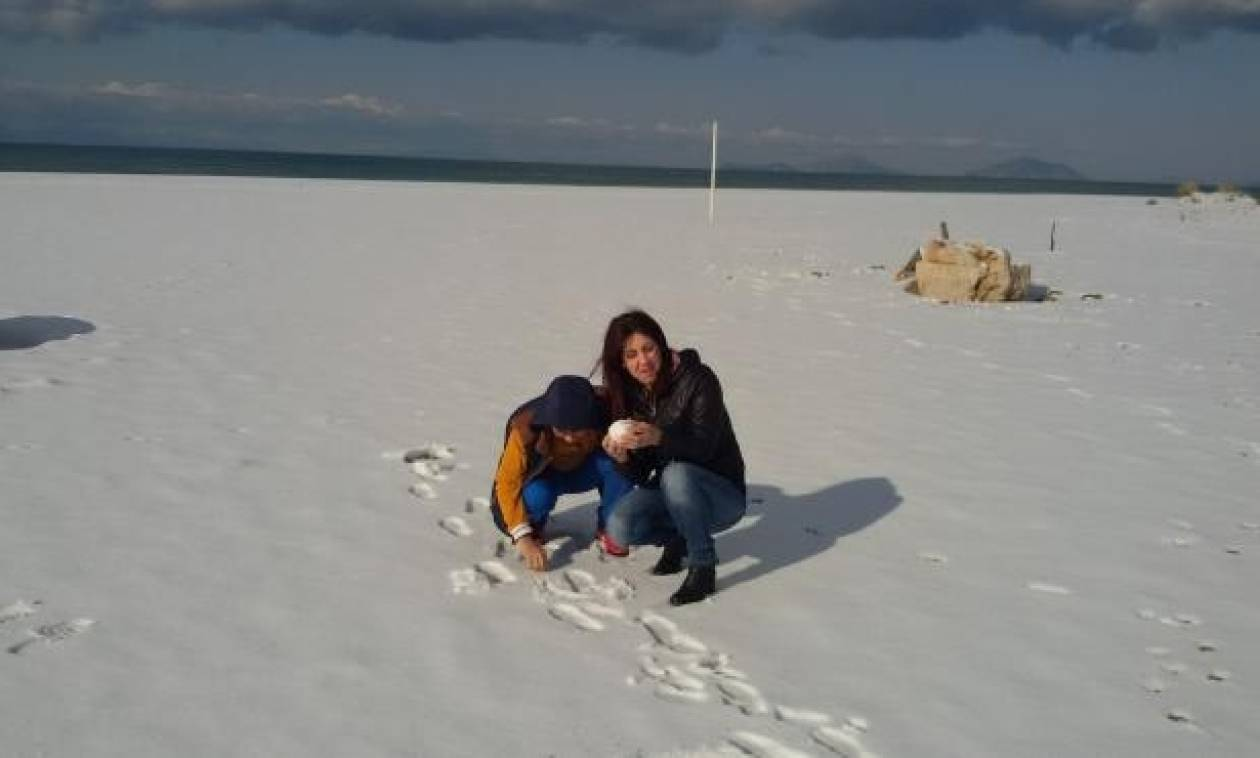 Χιονιάς «Αριάδνη»: Χιονοπόλεμος στη διάσημη παραλία της Καλογριάς! (pics)