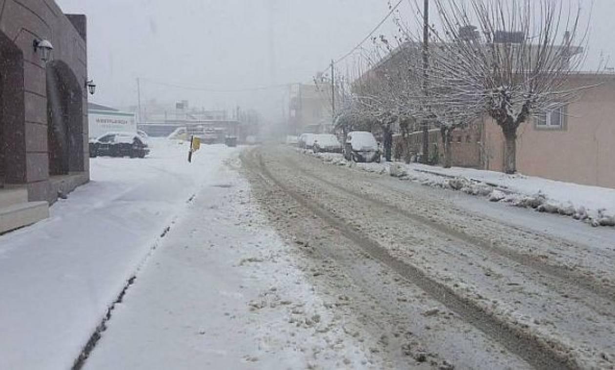 Καιρός: Χιόνια από τον Ψηλορείτη μέχρι την παραλία - Κλειστά αύριο τα σχολεία