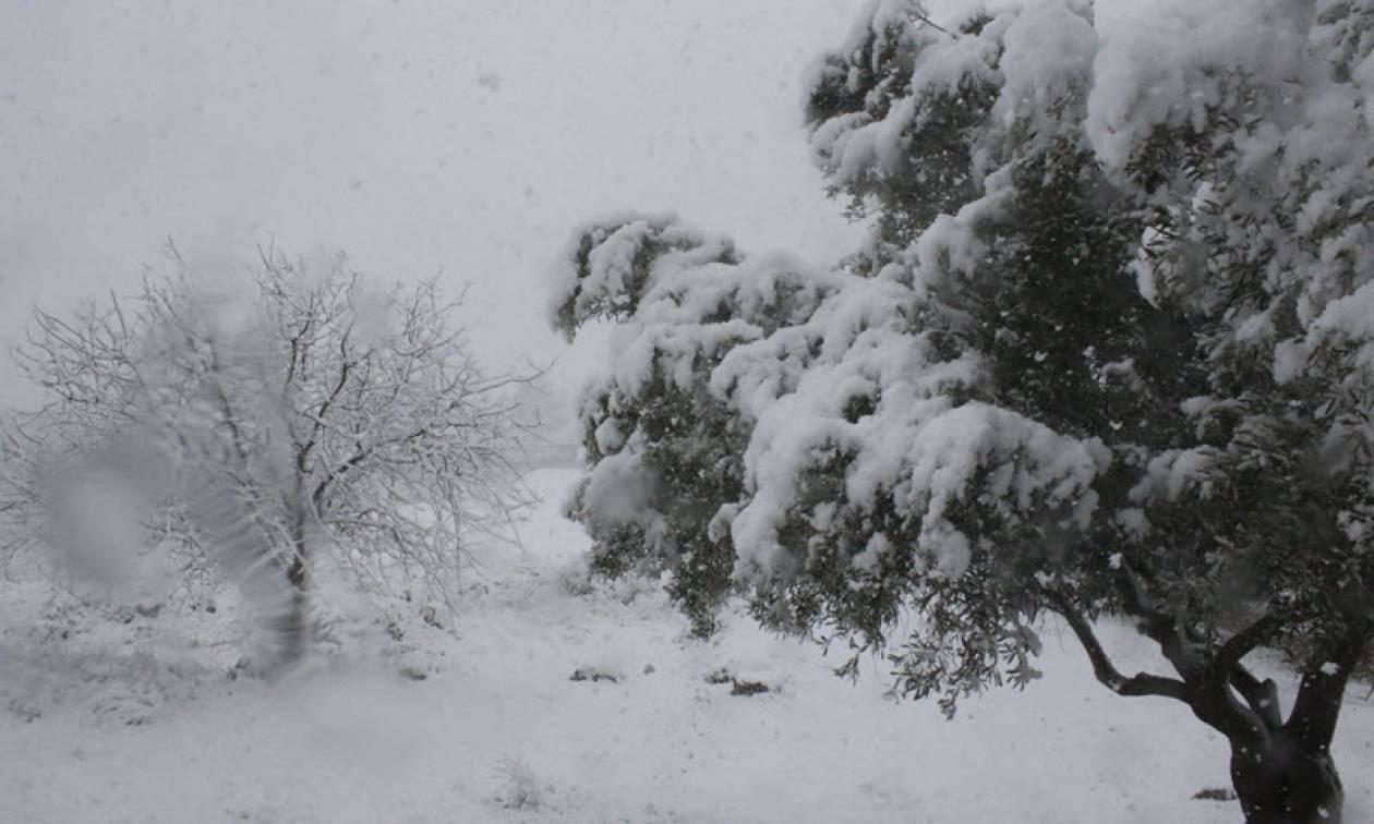 Καιρός Live: Στο έλεος της κακοκαιρίας και σήμερα η χώρα με πολικό ψύχος και πυκνές χιονοπτώσεις