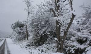 Καιρός: Έκτακτο δελτίο από την ΕΜΥ – Αυτές οι περιοχές θα θαφτούν στο χιόνι - Χιόνια και στην Αθήνα