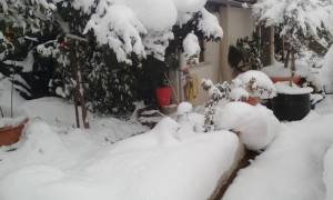 Καιρός ΤΩΡΑ: Θαμμένες στο χιόνι Κύμη και Αλόννησος – Εγκλωβισμένες στο χιόνι οικογένειες