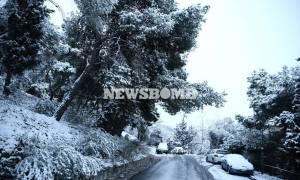Καιρός Αθήνα τώρα: Παγώνει το χιόνι - Προσοχή στον παγετό
