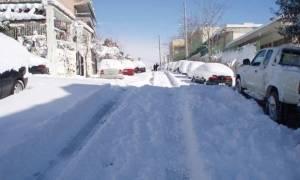 Καιρός: Σε απόγνωση οι αγρότες στην ανατολική Κρήτη από τη χιονόπτωση