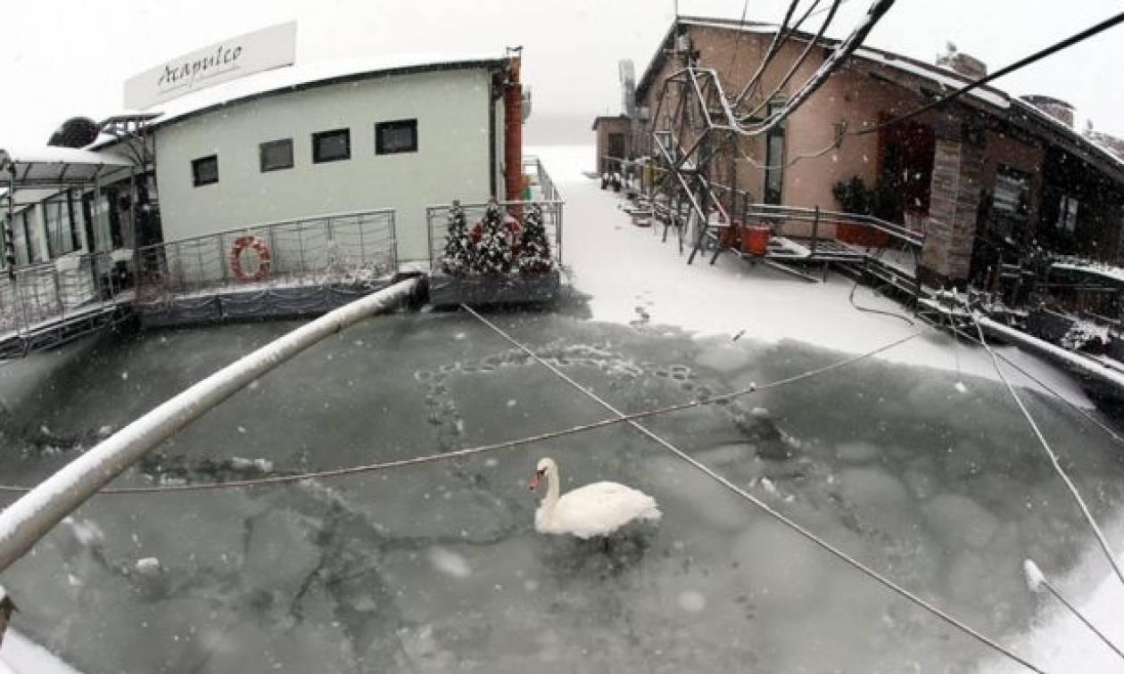 Απίστευτο: Έπεσε σε πηγάδι και έζησε για 2 ημέρες στους -20 βαθμούς Κελσίου!