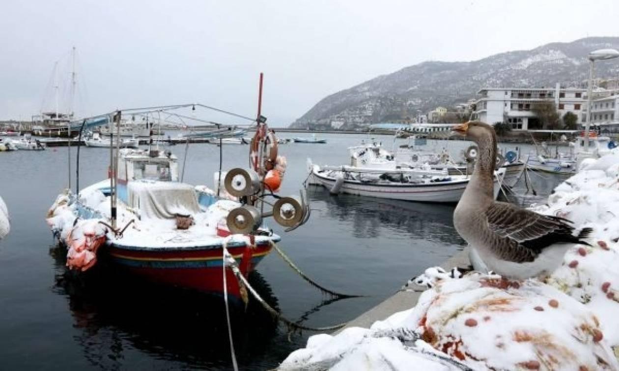 Βυθίστηκαν λόγω χιονιά οι βάρκες δύο εμβληματικών ψαράδων που διέσωσαν εκατοντάδες πρόσφυγες