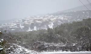 Καιρός Τώρα: Δεν θα λειτουργήσουν την Τετάρτη (11/1) τα σχολεία σε Μυτιλήνη και Λήμνο