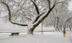 Καιρός ΤΩΡΑ: Θάφτηκαν στο χιόνι Ιωάννινα και Άρτα - Εικόνες - ΣΟΚ