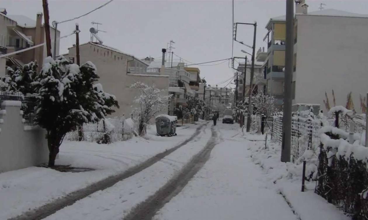Καιρός: Χιονίζει ασταμάτητα στη Λάρισα - Εγκλωβισμοί, κλειστά μαγαζιά και απροσπέλαστοι δρόμοι