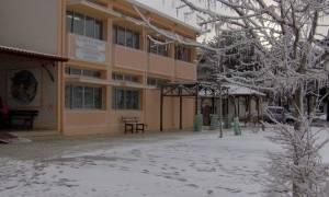 Κλειστά σχολεία: Πώς θα λειτουργήσουν την Πέμπτη στο νησί της Μυτιλήνης