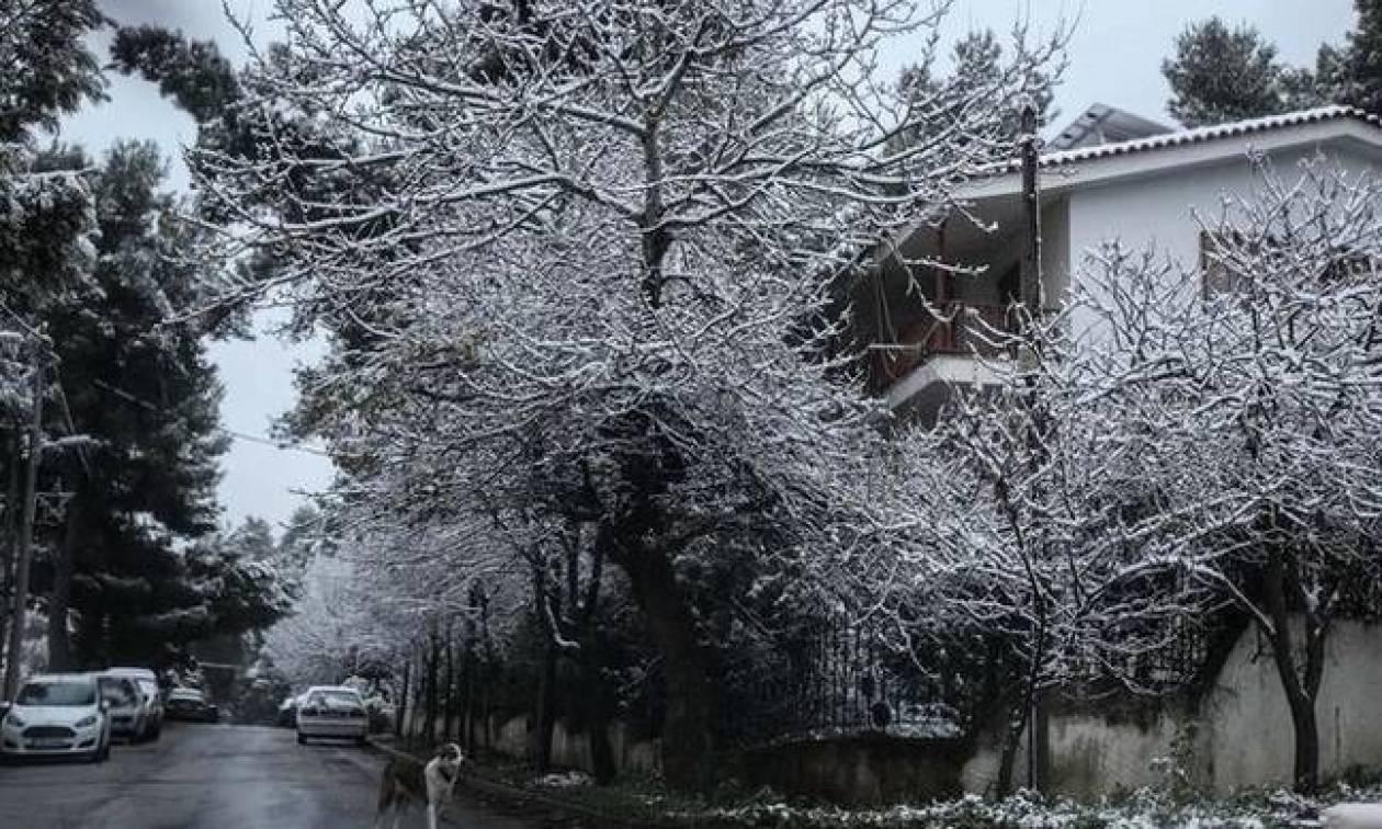 Καιρός ΕΜΥ:  Μετά τα χιόνια… βροχές και καταιγίδες! - Πότε υποχωρεί η κακοκαιρία