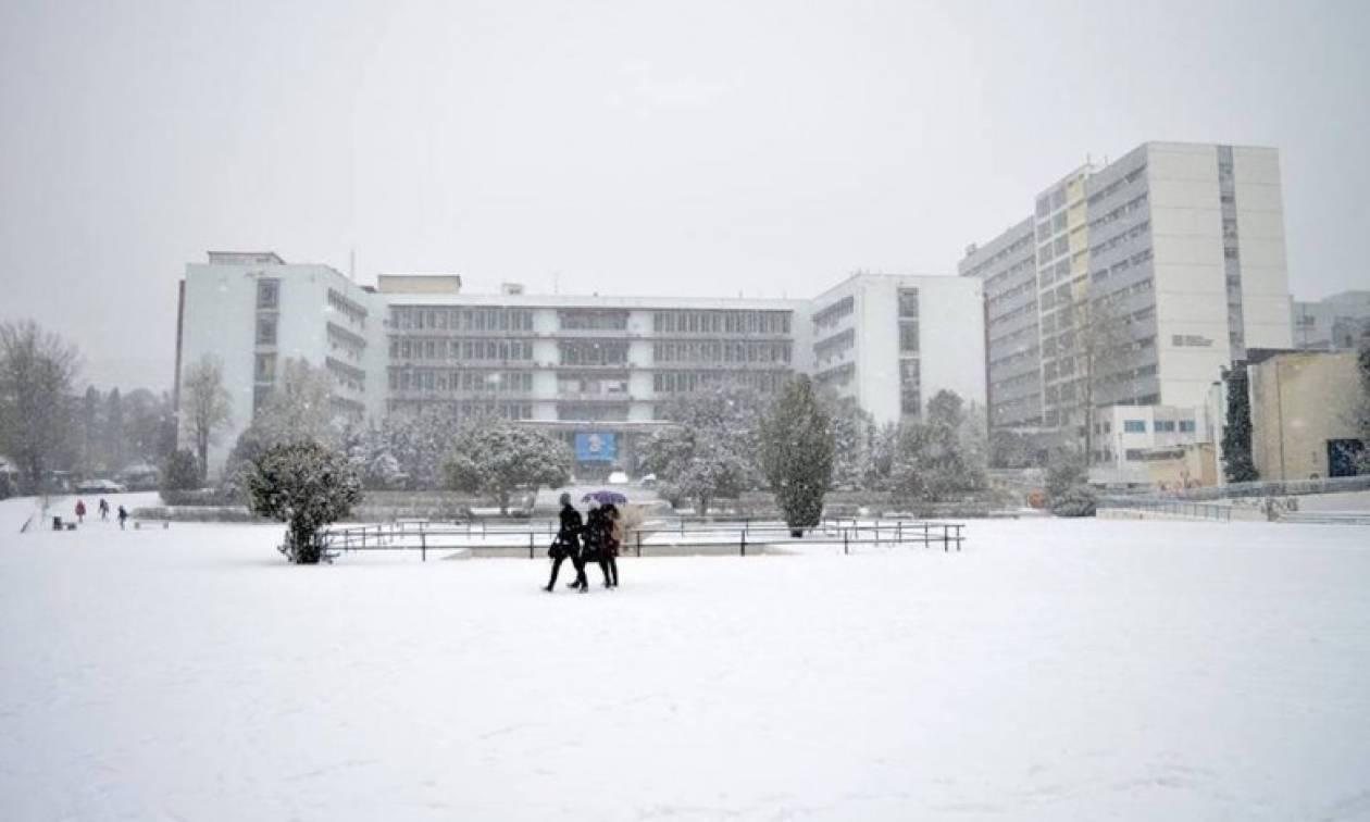 Καιρός Θεσσαλονίκη: Κλειστά την Πέμπτη ΑΠΘ και ΠΑΜΑΚ - Τι θα ισχύσει για την εξεταστική