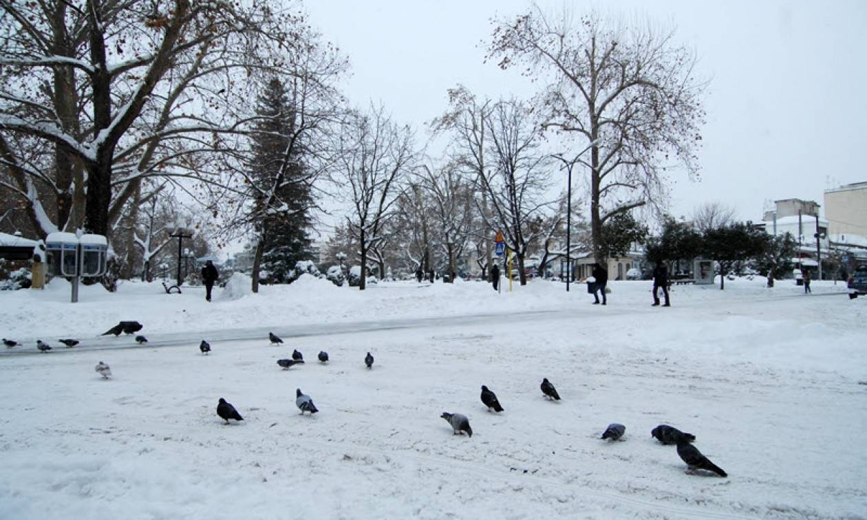 Καιρός Σήμερα: Υποχωρούν τα έντονα φαινόμενα - Πού θα χιονίσει τις επόμενες ώρες (pics)