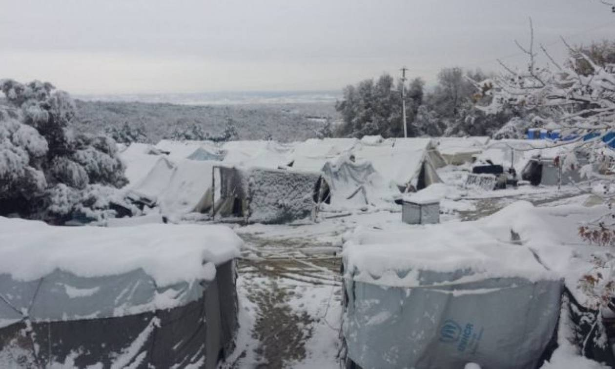 Στέλεχος των ΑΝΕΛ για πρόσφυγες: Να ψοφήσουν μέσα στις σκηνές!
