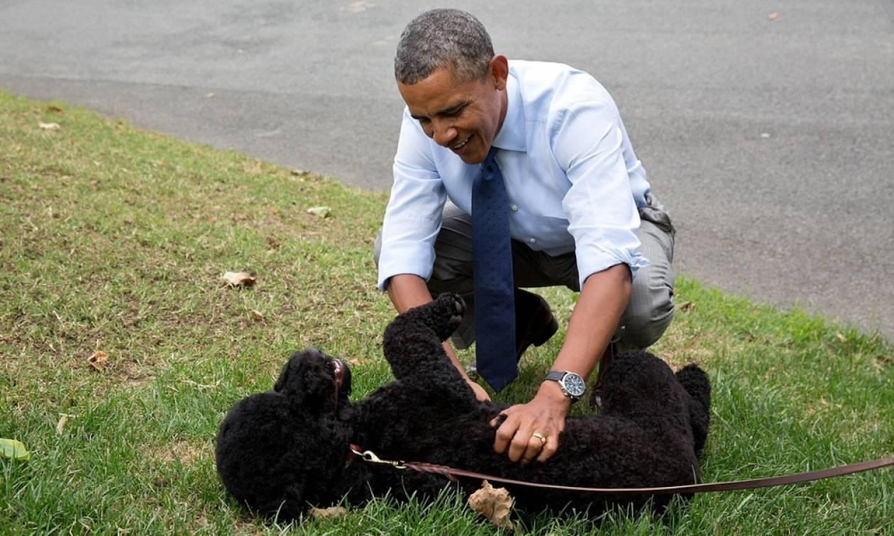 ΗΠΑ: Η σκυλίτσα των Ομπάμα δάγκωσε 18χρονη που θέλησε να την χαϊδέψει στο Λευκό Οίκο (pic)