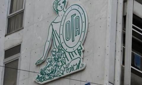 ΟΓΑ: Κλείνουν σήμερα (15//1) οι αιτήσεις στο Taxisnet για τα οικογενειακά επιδόματα