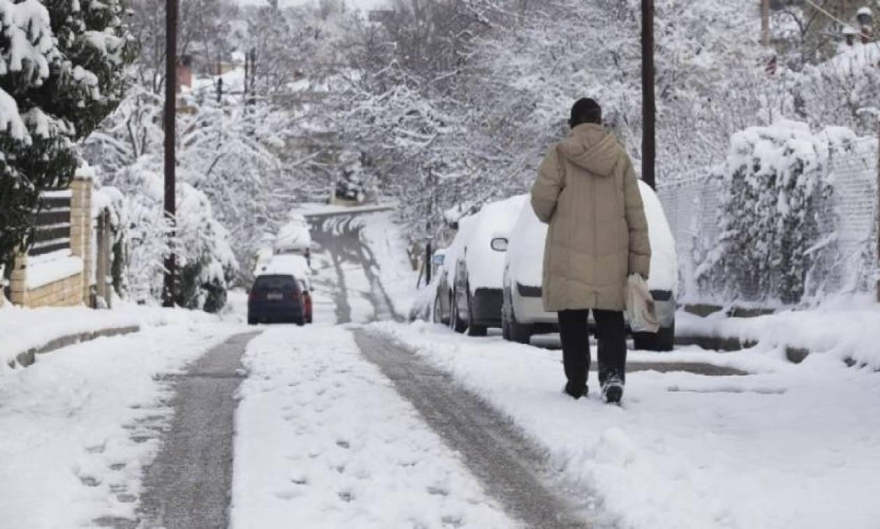 Καιρός: Σε επιφυλακή για το νέο κύμα χιονιά σε Τρίκαλα και Καρδίτσα