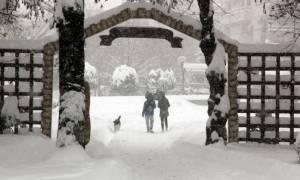Καιρός ΤΩΡΑ: Έκτακτο δελτίο από την ΕΜΥ - Χιονιάς θα «χτυπά» τη χώρα έως την Πέμπτη - Πού χιονίζει