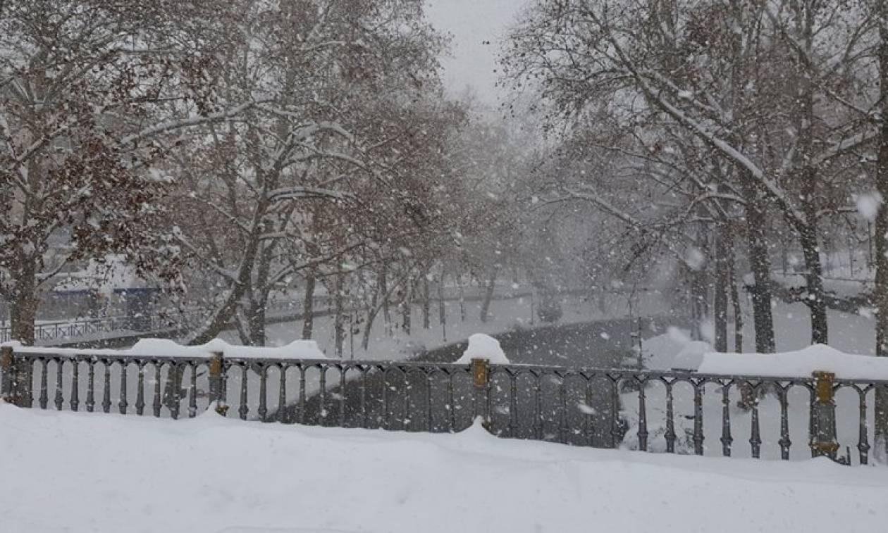 Τραγωδία στον Έβρο: Βρέθηκε νεκρός και καλυμμένος με ένα μέτρο χιόνι
