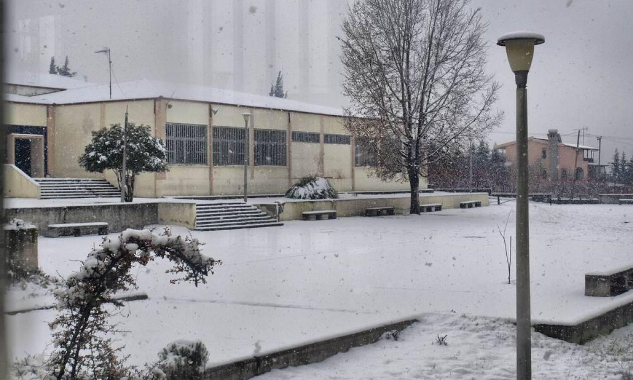 Καιρός: Πώς θα λειτουργήσουν την Τρίτη τα σχολεία στη Θεσσαλονίκη