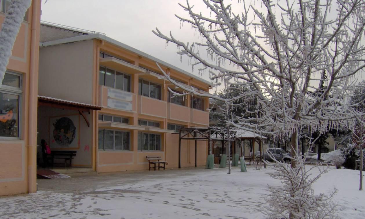 Καιρός: Ποια σχολεία δεν θα λειτουργήσουν την Τρίτη (17/1) στο νομό Λάρισας