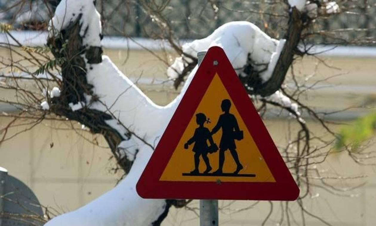 Καιρός: Δείτε ποια σχολεία θα παραμείνουν κλειστά σήμερα Τρίτη (17/1)