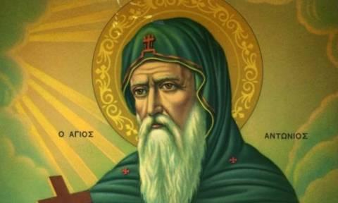 Εορτή του Αγίου Αντωνίου