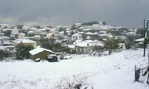 Καιρός: Σφοδρή χιονόπτωση και τσουχτερό κρύο στην Ήπειρο