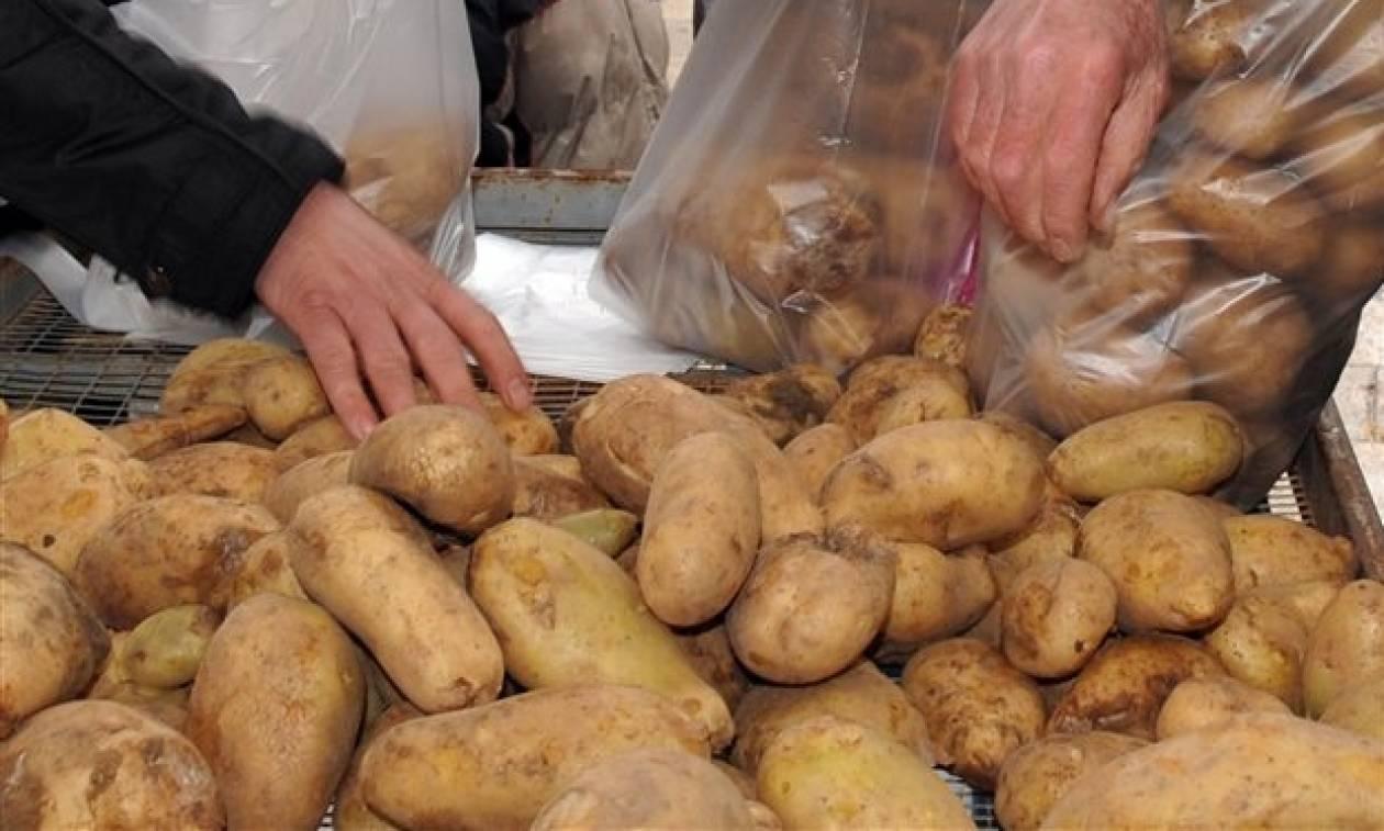 Οργανωμένο κύκλωμα «βάφτιζε» γαλλικές πατάτες ως ελληνικές και… πλούτιζε