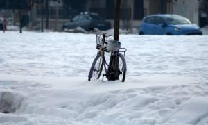 Καιρός: Έντονα φαινόμενα σε όλη την χώρα με χιόνια και βροχές