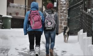 Καιρός: Κλειστά την Παρασκευή τα σχολεία στην Κομοτηνή