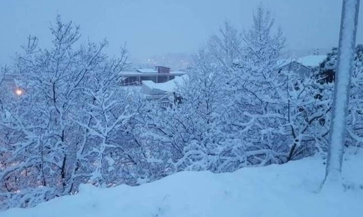 Καιρός: Προ των πυλών ο νέος χιονιάς – Πότε θα σαρώσει την Ελλάδα