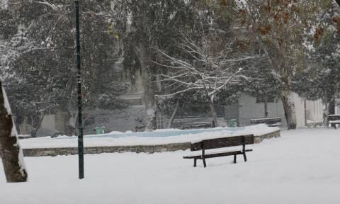 Καιρός: Ραγδαία επιδείνωση των φαινομένων με χιόνια, καταιγίδες και πολικές θερμοκρασίες (pics)