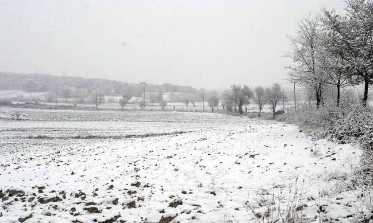 «Σιβηρία» καιρός από σήμερα - Κακοκαιρία με πυκνές χιονοπτώσεις και χαμηλές θερμοκρασίες (pics)