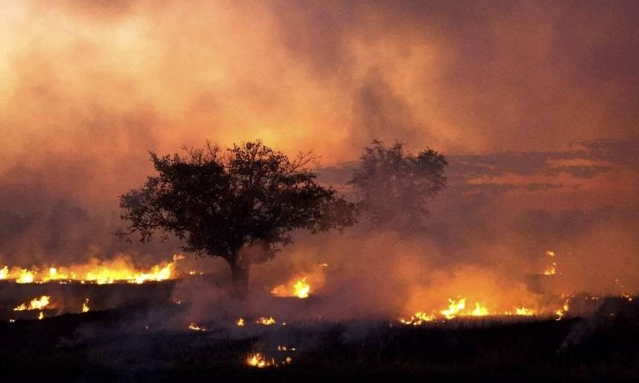 Εικόνες Αποκάλυψης στη Χιλή: 9 νεκροί και εκατ. στρέμματα γης αποκαΐδια από την πύρινη κόλαση (vids)