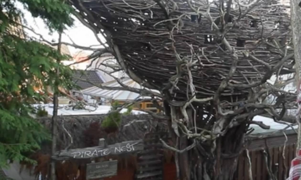 Μάζευε ξερά κλαδιά απ' το δρόμο! Οταν δείτε τι έφτιαξε στην αυλή του θα τα χάσετε... (video)