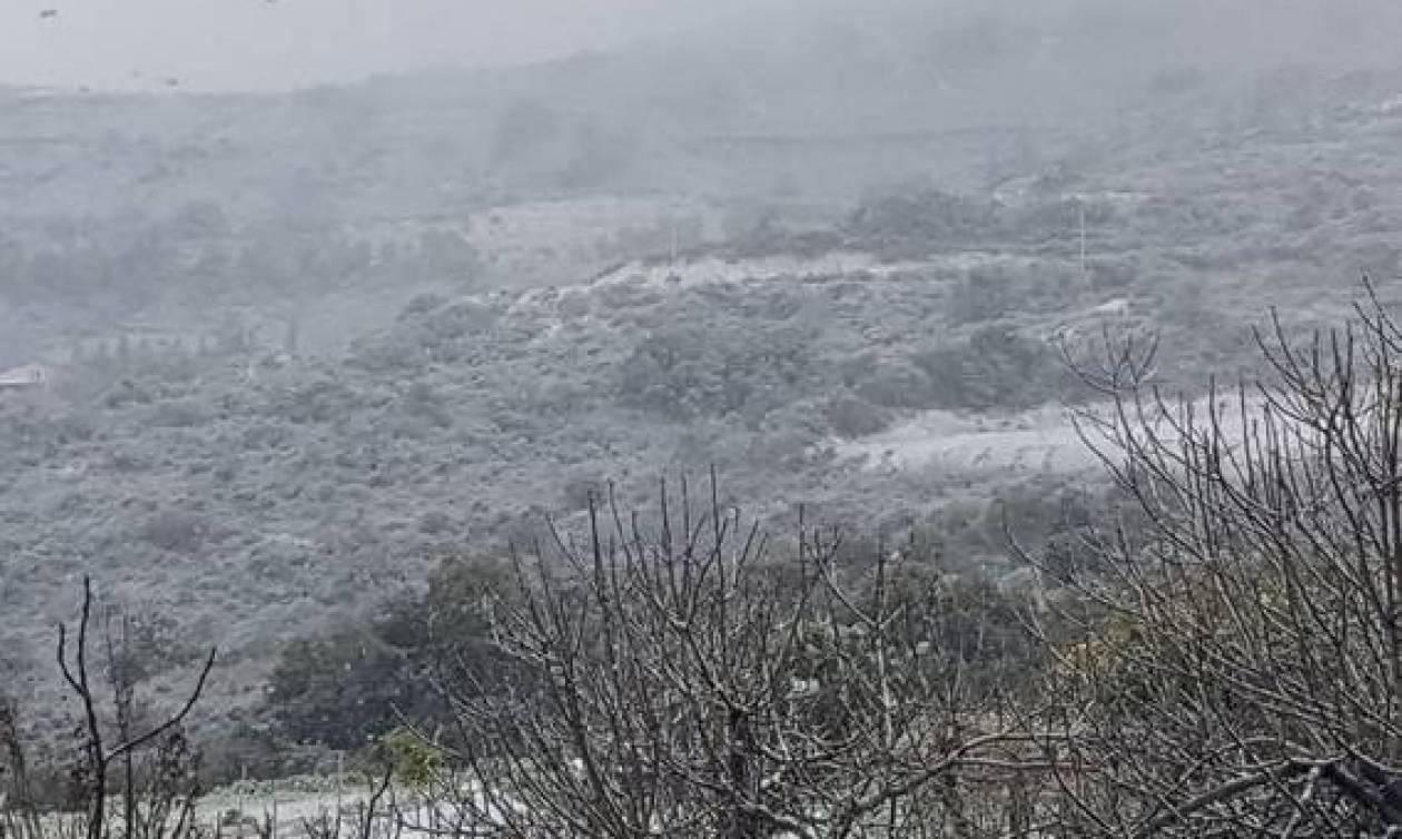 Αυτός είναι χειμώνας: Ένα προς ένα τα κυπριακά χωριά που ντύθηκαν στα λευκά (photos)