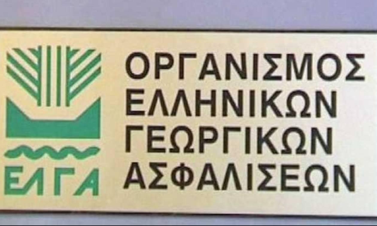 Αποζημιώσεις 9,4 εκατ. ευρώ θα καταβάλει ο ΕΛΓΑ σε 5.062 αγρότες