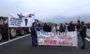 Μπλόκα αγροτών: Ο πρώτος αποκλεισμός της εθνικής οδού από το μπλόκο της Ανθήλης (vid)