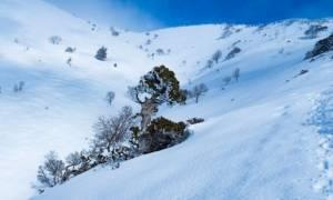 Έντεκα ιδιαίτεροι λόγοι για να επισκεφτείς την Κρήτη και τον χειμώνα