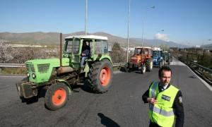Συνεχίζουν δυναμικά τις κινητοποιήσεις οι κτηνοτρόφοι της Θεσσαλίας - Σκέφτονται κάθοδο στην Αθήνα