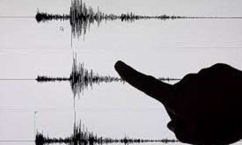 «Βόμβα» Παπαζάχου για το σεισμό στη Μυτιλήνη (vid)