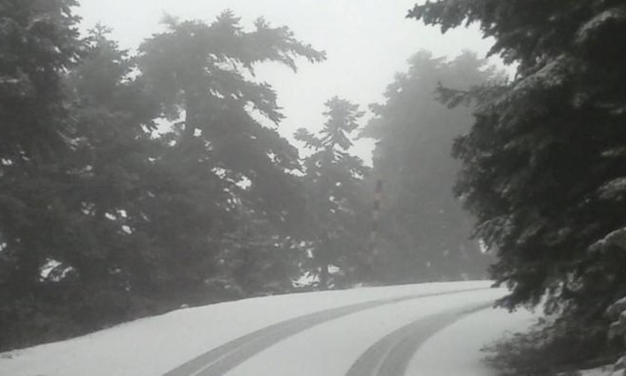 Μετεωρολόγος προειδοποιεί: Ψυχρή εισβολή απ' το Σάββατο. Πού θα χιονίσει (photo)