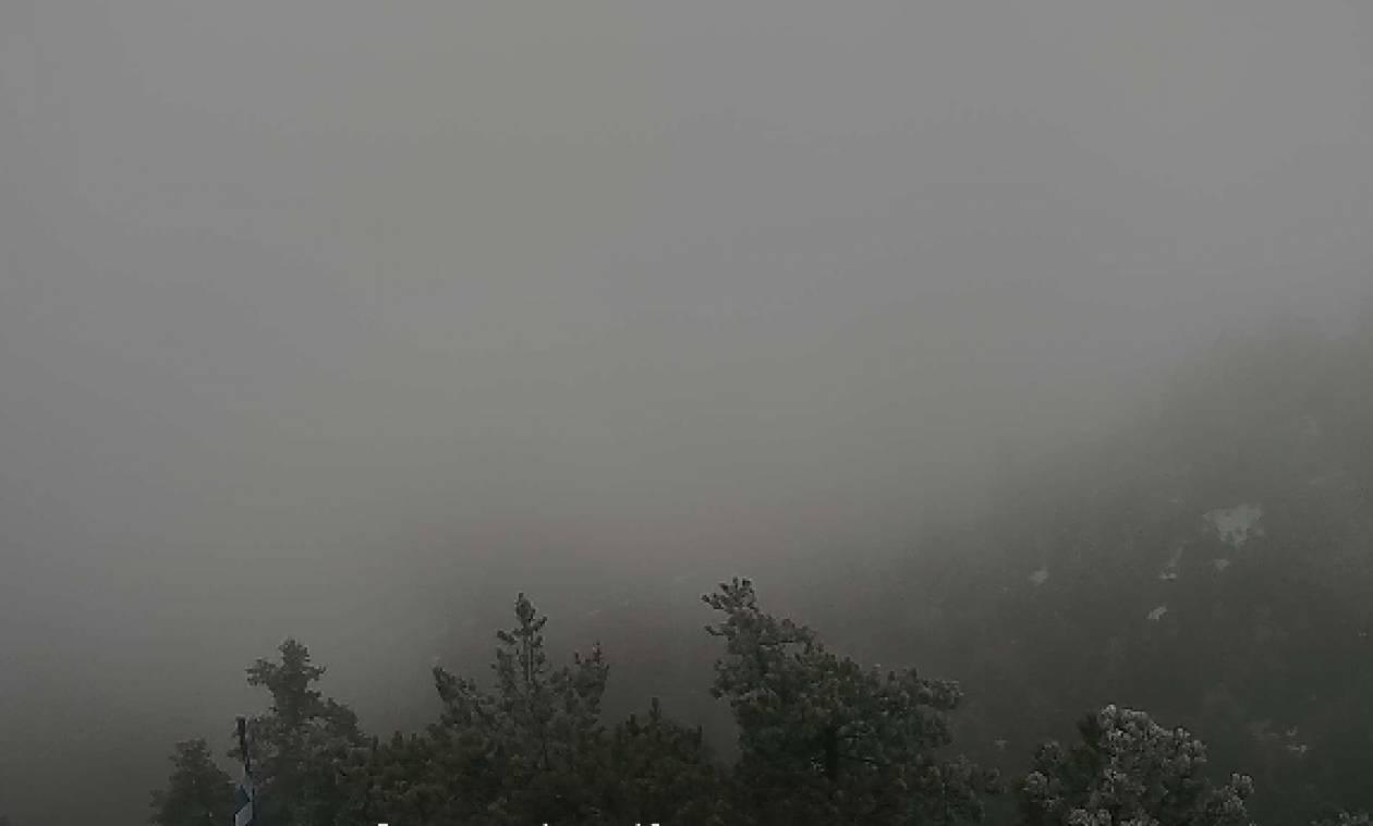 Καιρός-χιόνια: Το έστρωσε ξανά στην Πάρνηθα. Δείτε Live εικόνα (Photo)