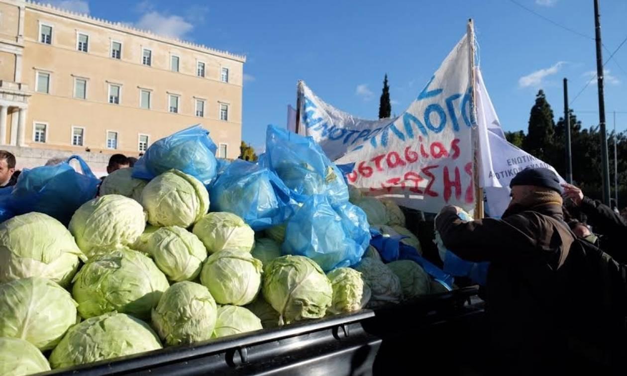 Συλλαλητήριο αγροτών: Μοίρασαν λάχανα στους πολίτες έξω από τη Βουλή (photos)