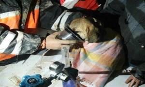 Συγκινεί η διάσωση ενός κουταβιού από πηγάδι στην Κωνσταντινούπολη (pics+vid)