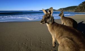 Αυστραλία: Πόλος έλξης για τους Κινέζους τουρίστες