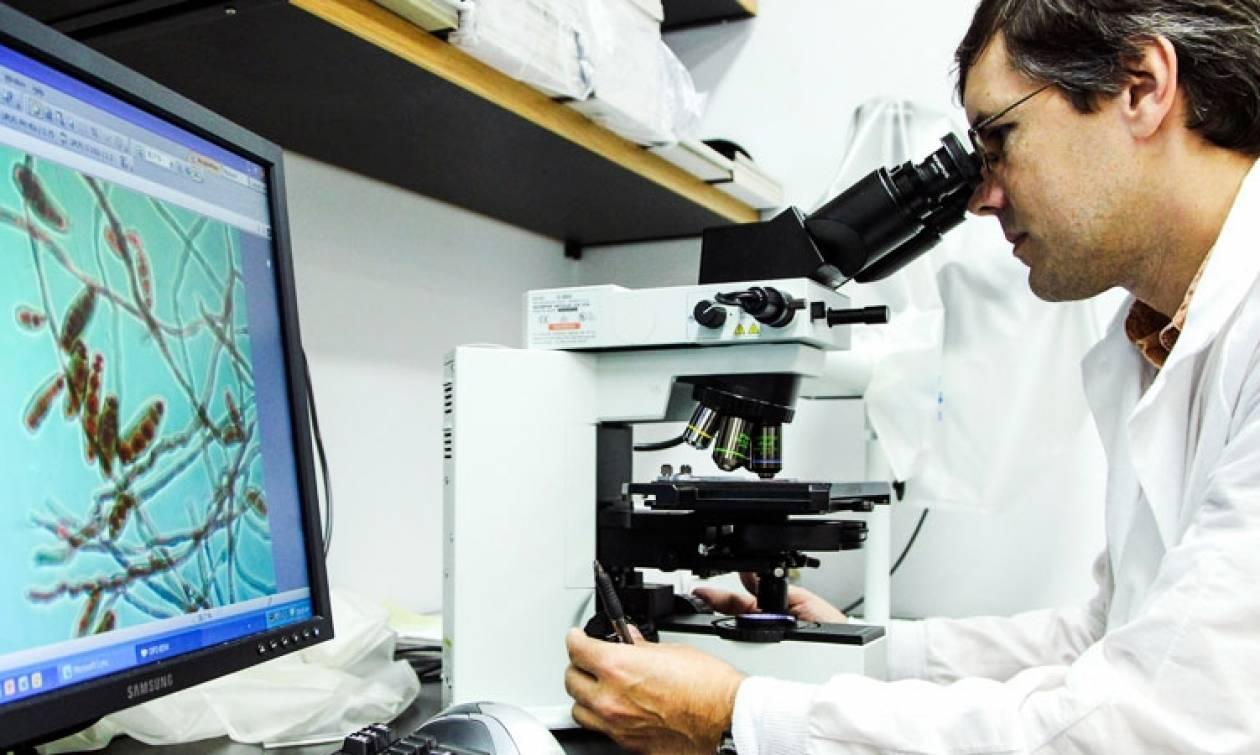 Υποτροφίες μεταδιδακτορικής έρευνας για νέους ερευνητές